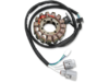 Ricks Motorsport Electric Stator
